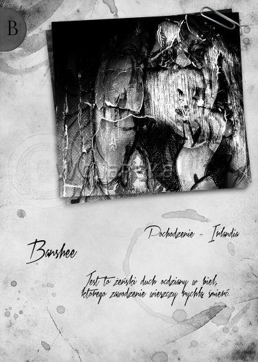 Elementarz Banshee